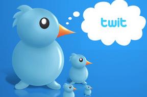 Twitter Twit